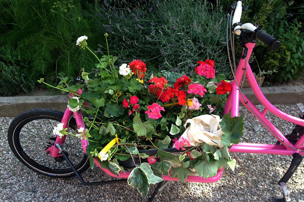 recycle cargo bike flowers