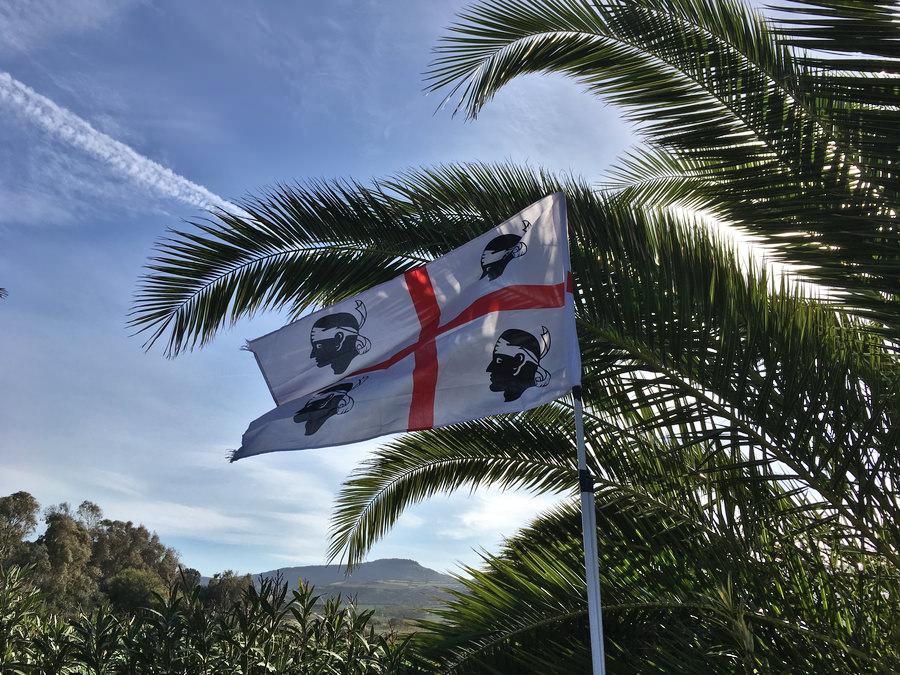 sardinya bayrağı