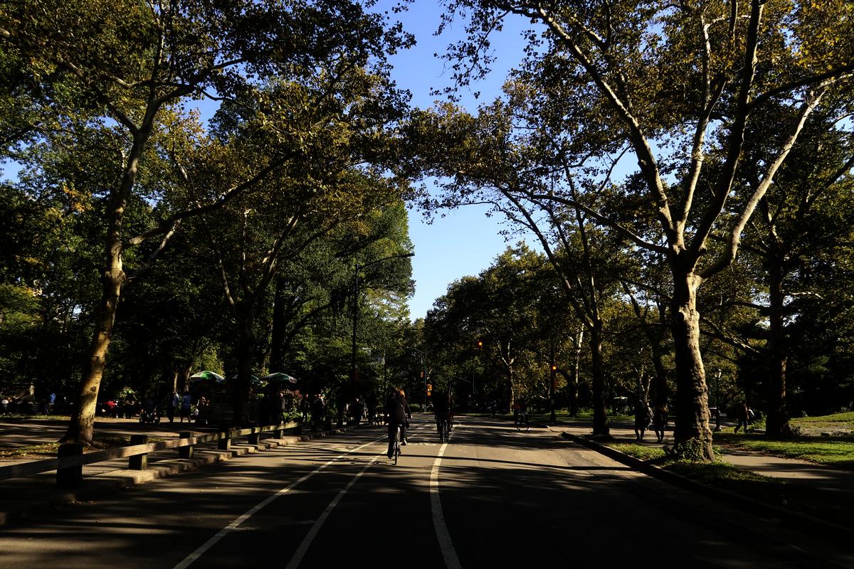 central park bisiklet